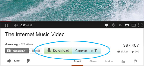 DAP Features - Download and Convert Video Buttons Screenshot